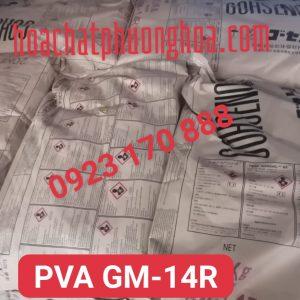 PVA GM14R