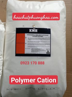 POLYMER CATION